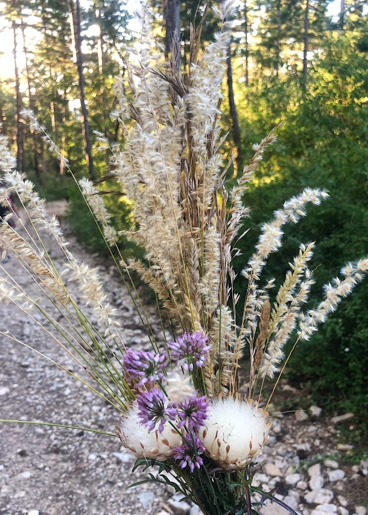 Fleurs à faire sécher