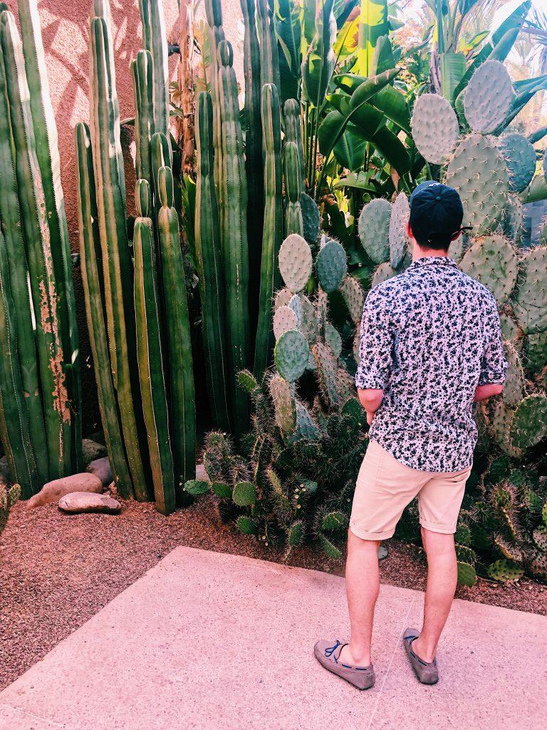 Végétation verdoyante